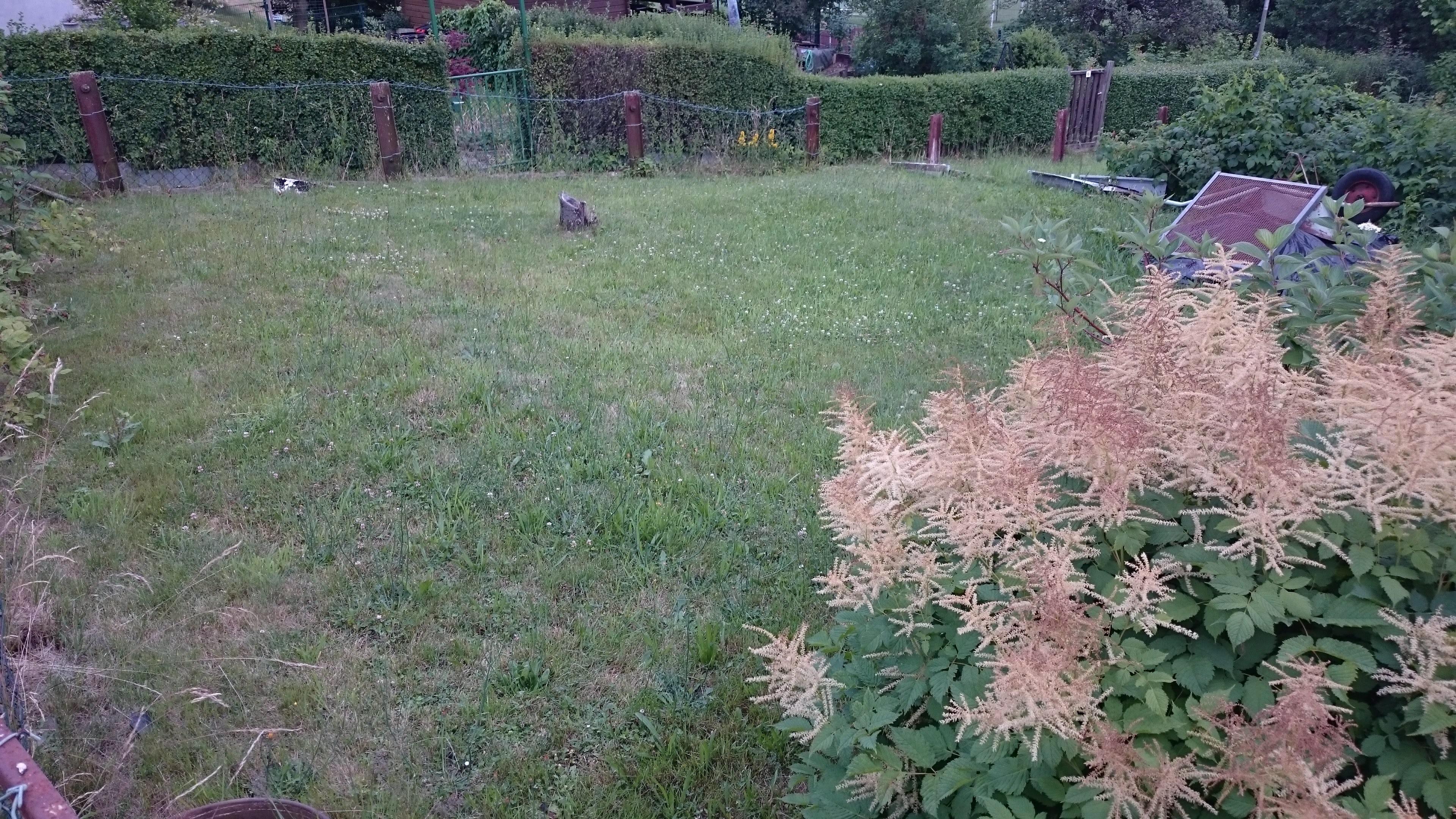 Garten26